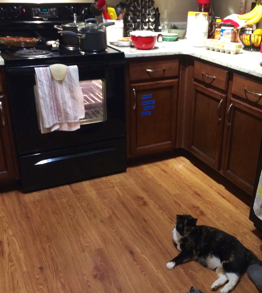 My helpful sous-chef, not at all in the way.